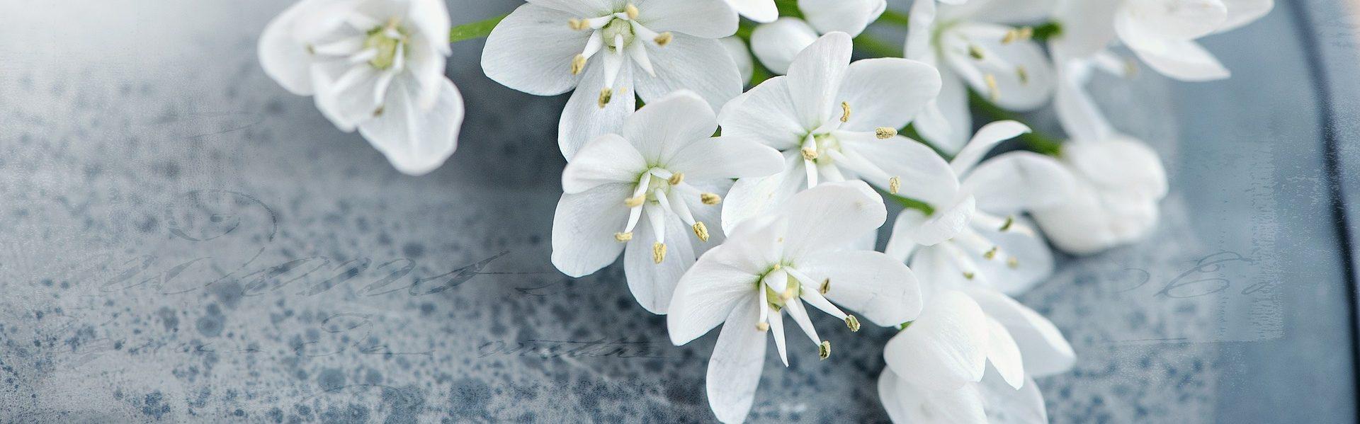 Kirsin kukka- ja hautauspalvelu